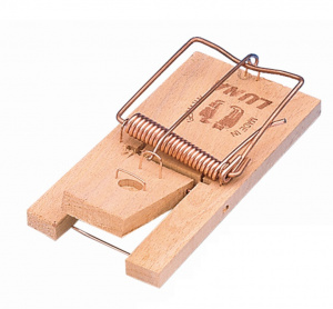 Luna mouse clamp 9,5 x 4,8 cm wood/steel natural